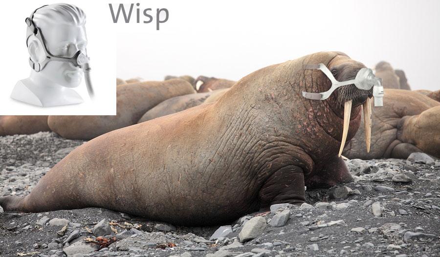 Wisp-Nasal-Mask-Walrus