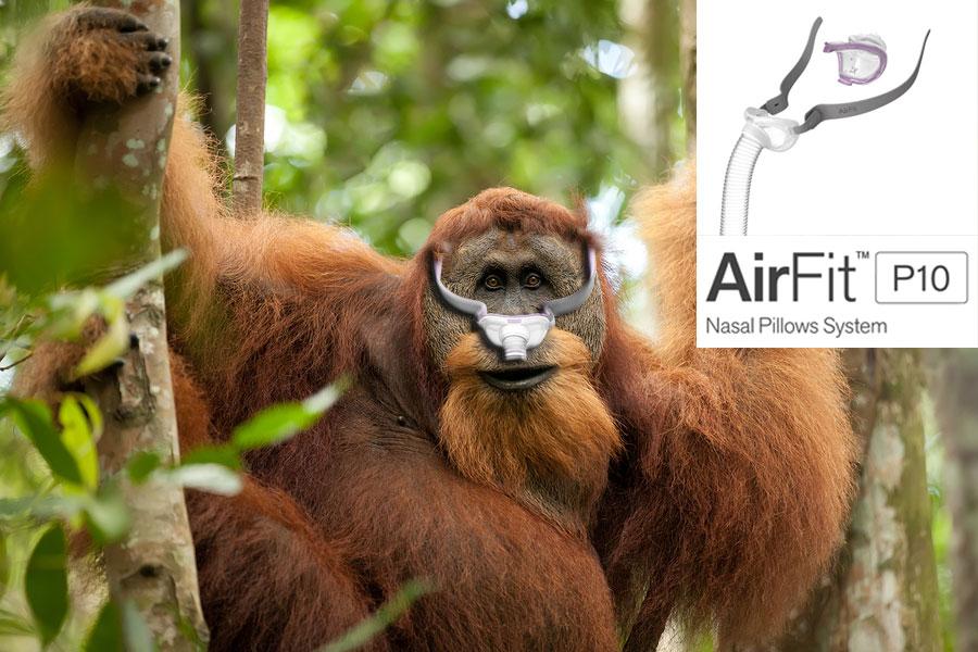 AirFit-P10-Mask-System-Orangatan