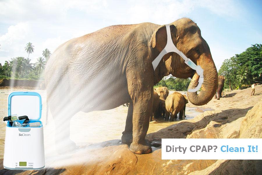 SoClean-2-elephant