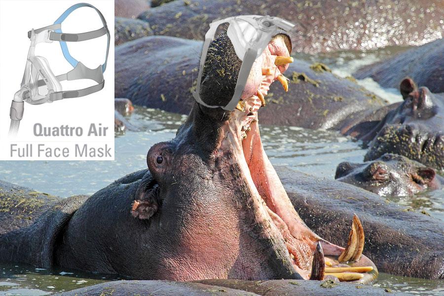 Quattro-Air-Full-Face-Mask-Hippo