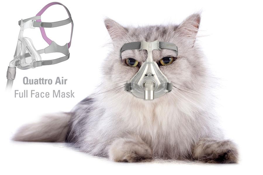 Quattro-Air-Full-Face-Mask-Cat
