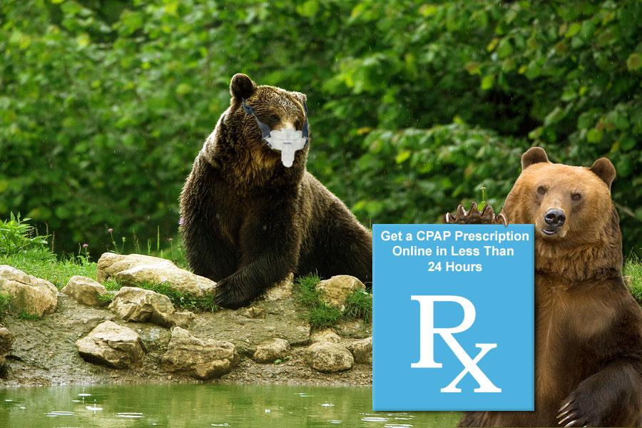 CPAP-RX-Package-Bear
